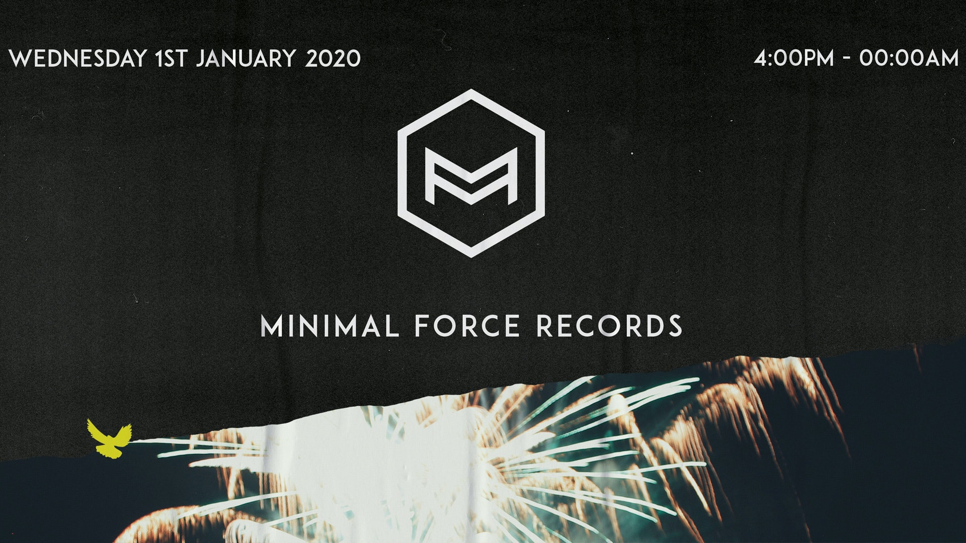 Minimal Force NYD