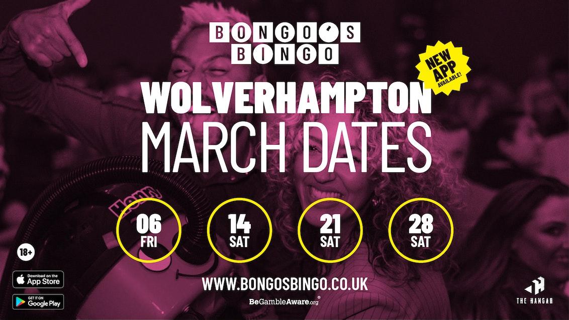 Bongo's Bingo | SOLD OUT