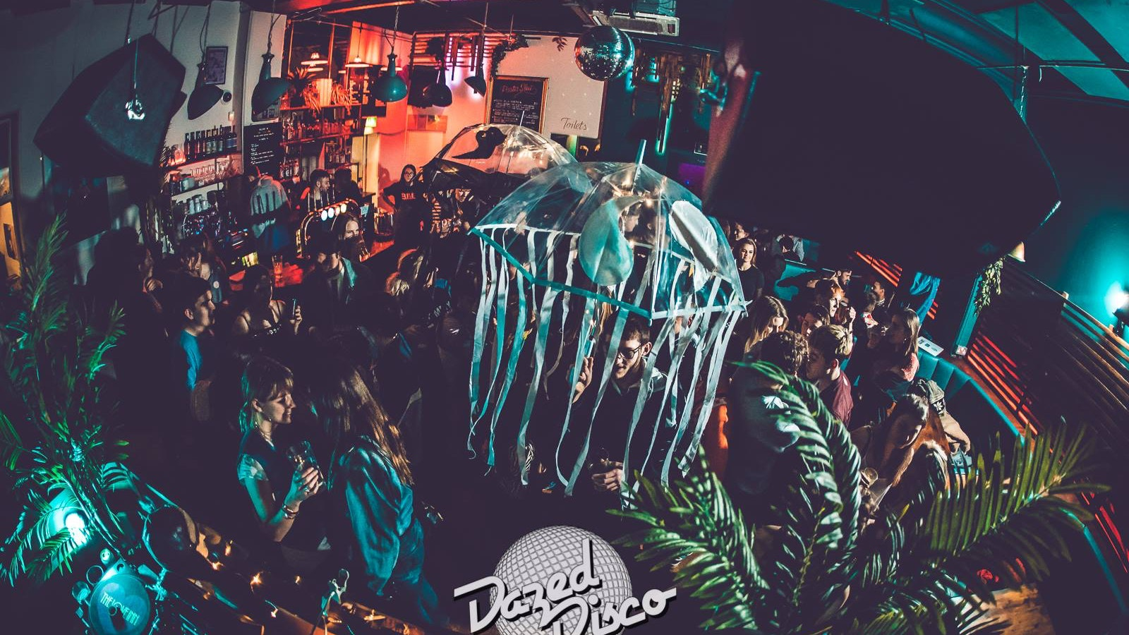 Dazed Disco
