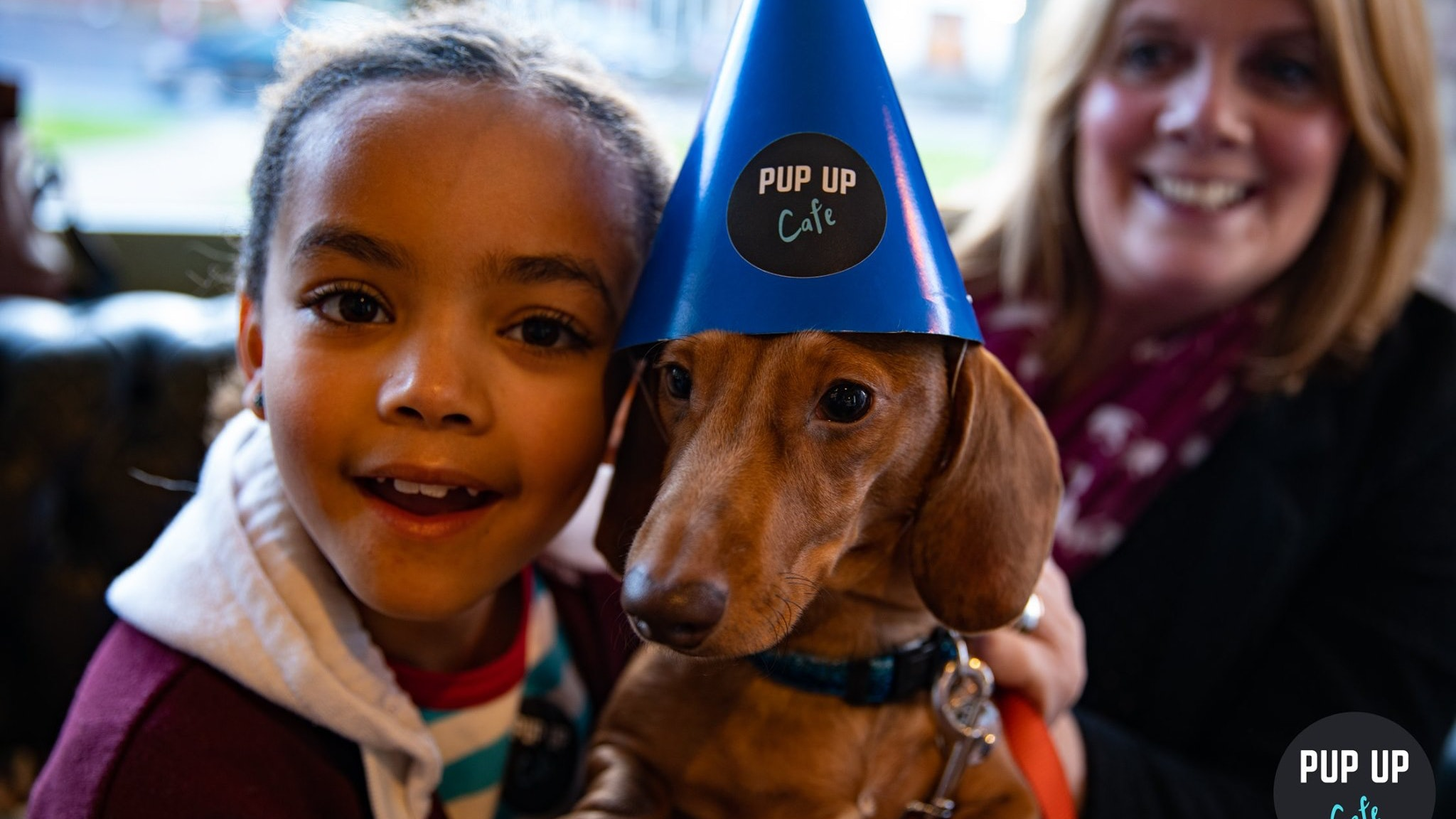 Dachshund Pop Up Cafe – London