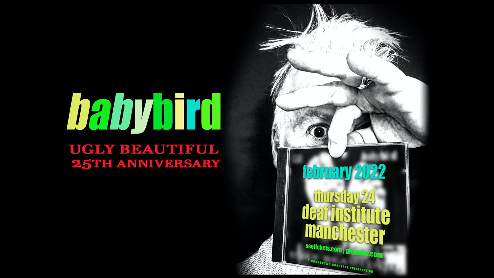 Babybird – Ugly Beautiful 25TH Anniversary